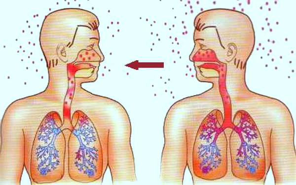 Механизмы передачи инфекционных заболеваний или как можно заразиться