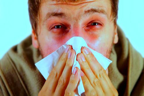 Новости про грипп этого сезона