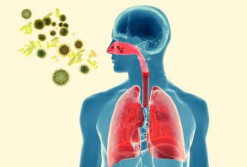 Основы профилактики передачи коронавирусной инфекции