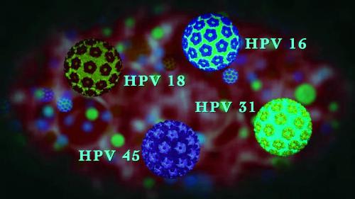 Прививка ВПЧ что это стоит узнать